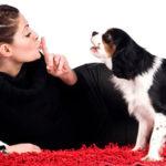 гаддание на святки по лаю собак